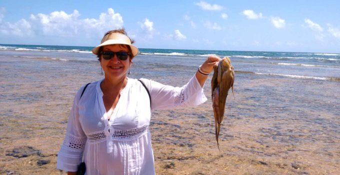 Mergulhando nas barreiras de coral de Maraú – BA