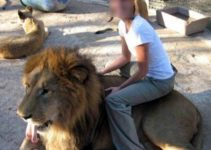 O Animal como Atrativo Turístico