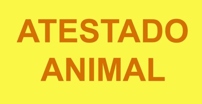 Modelo Atestado de Saúde Animal