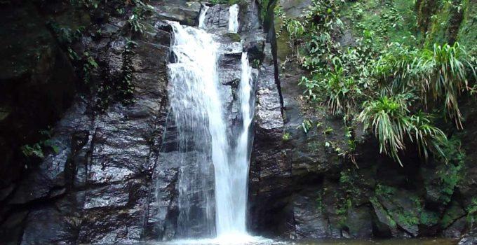 Cascata do Chuveiro, no Horto Florestal, RJ