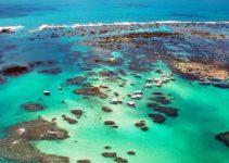 Piscinas naturais em Maragogi, Alagoas
