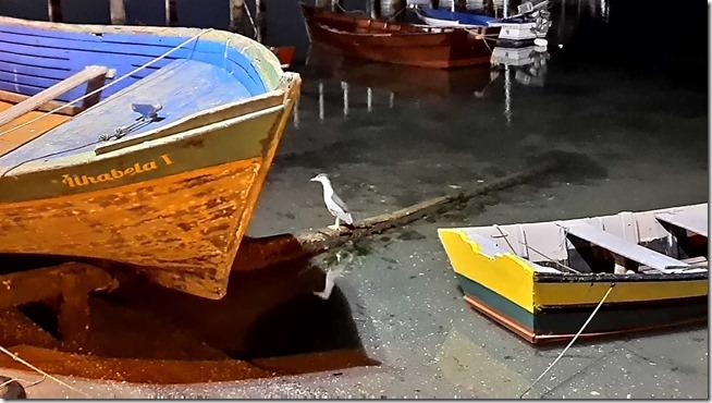 Barcos-no-Canal---Bairro-da-Passagem11