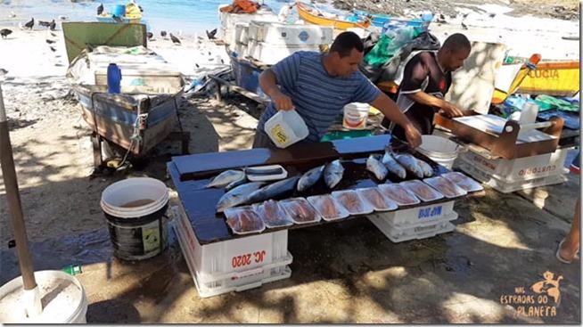 banca-de-peixes-colonia-pescadores-praia-do-forte