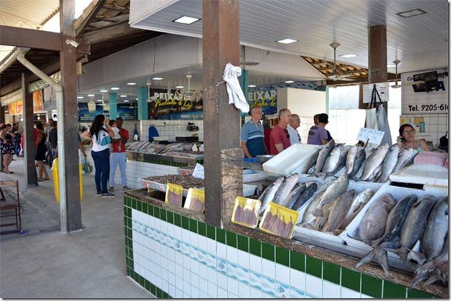 banca-de-peixes-mercado-municipal-de-peixes-cabo-frio