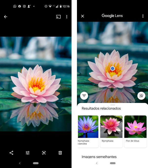 Google Lens, pesquisa por imagem de quase tudo. 3