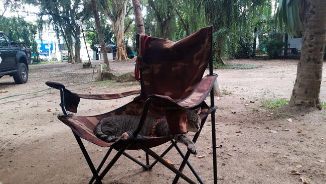 Camping Portal de Paraty 17